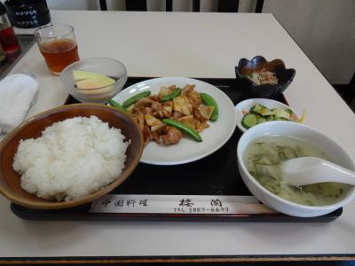 rou_teishoku.jpg