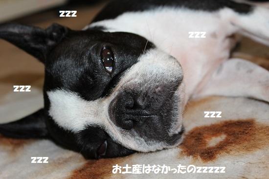 77yk12.jpg