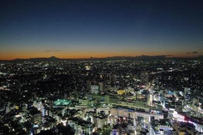 2014-11-14-1711-ikebukuro.jpg