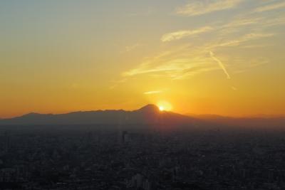 2014-11-14 1623-sunshine60