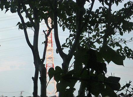 高圧線鉄塔に夕陽・・・