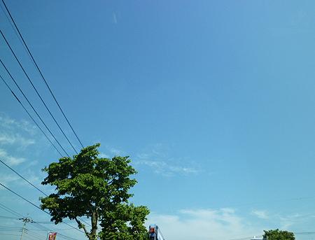 立秋の青空