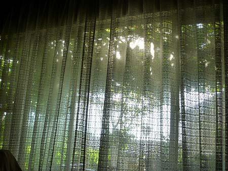 雨上がりの光り