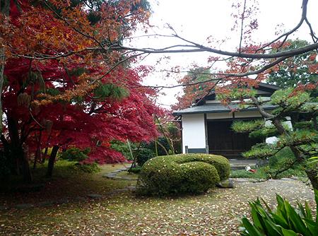 下田邸書院&安部衛の庭