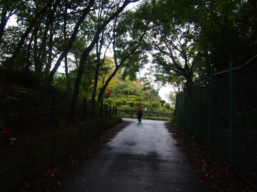 20131104・空05