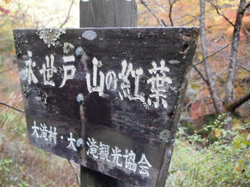 20131116・中津川3-01