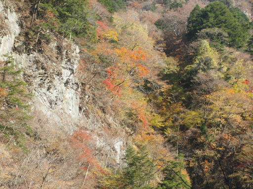20131116・中津川3-11
