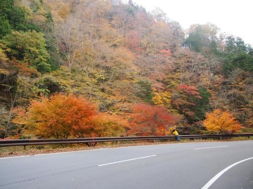 20131116・中津川3-24