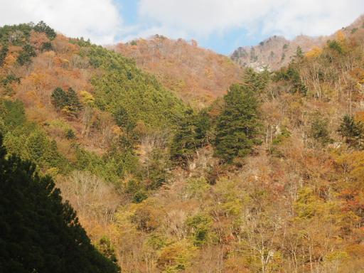 20131116・中津川5-08