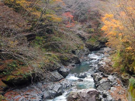 20131116・中津川6-15