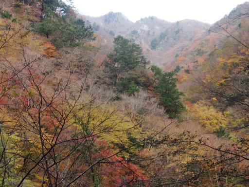 20131116・中津川7-04