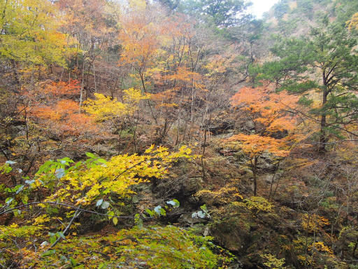 20131116・中津川7-01