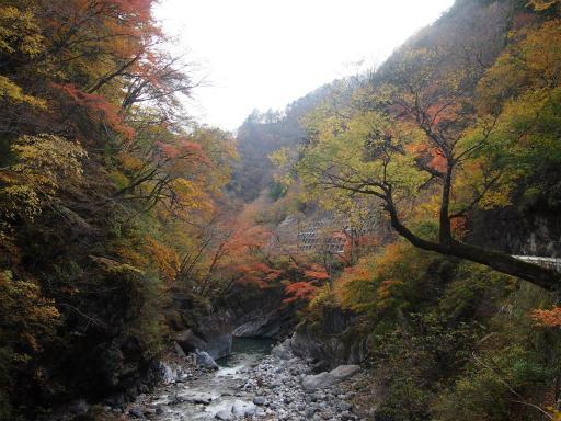 20131116・中津川7-09