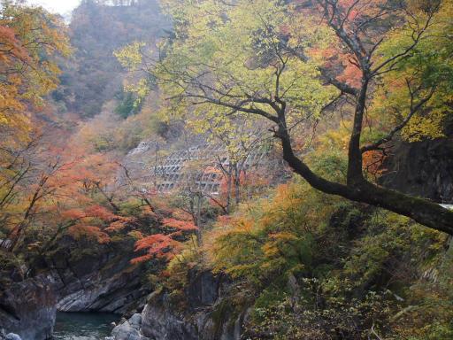 20131116・中津川7-10