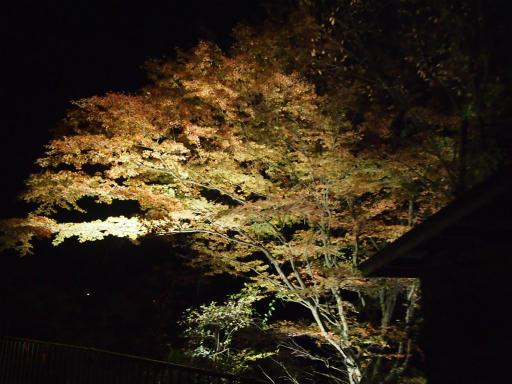 20131116・中津川8-13
