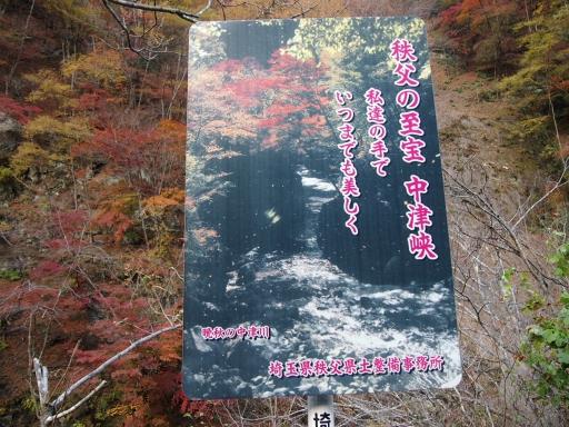 20131116・中津川ネオン13