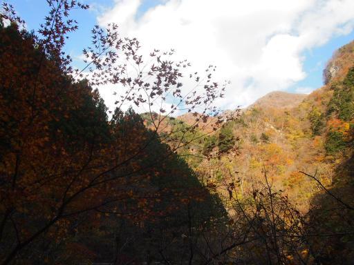 20131116・中津川空2-01・仏石山遊歩道
