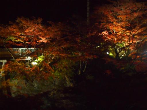 20131116・中津川空2-10・金蔵落しの渓流