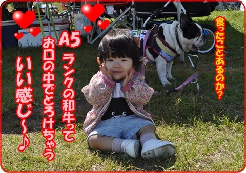 2013-6-10-11.jpg