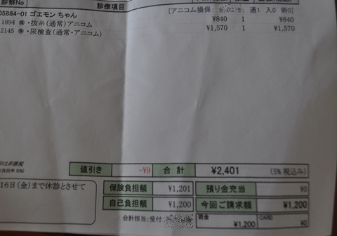 2013-8-2-10.jpg