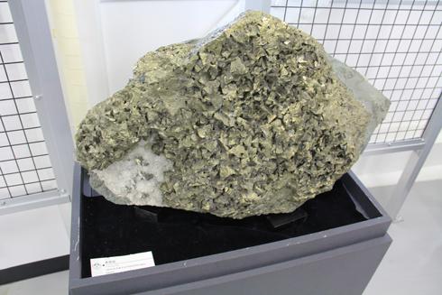 秋田大学鉱業博物館-10