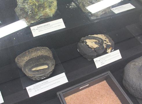 秋田大学鉱業博物館-16