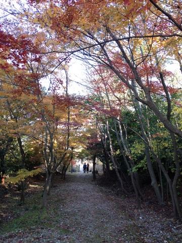 2013-11-025.jp<br />&lt;br /&gt;&lt;br /&gt;g