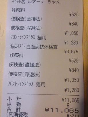 医療費レシート
