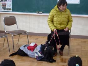 盲導犬14-2