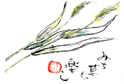 道草1028