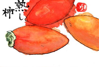 熟柿1122