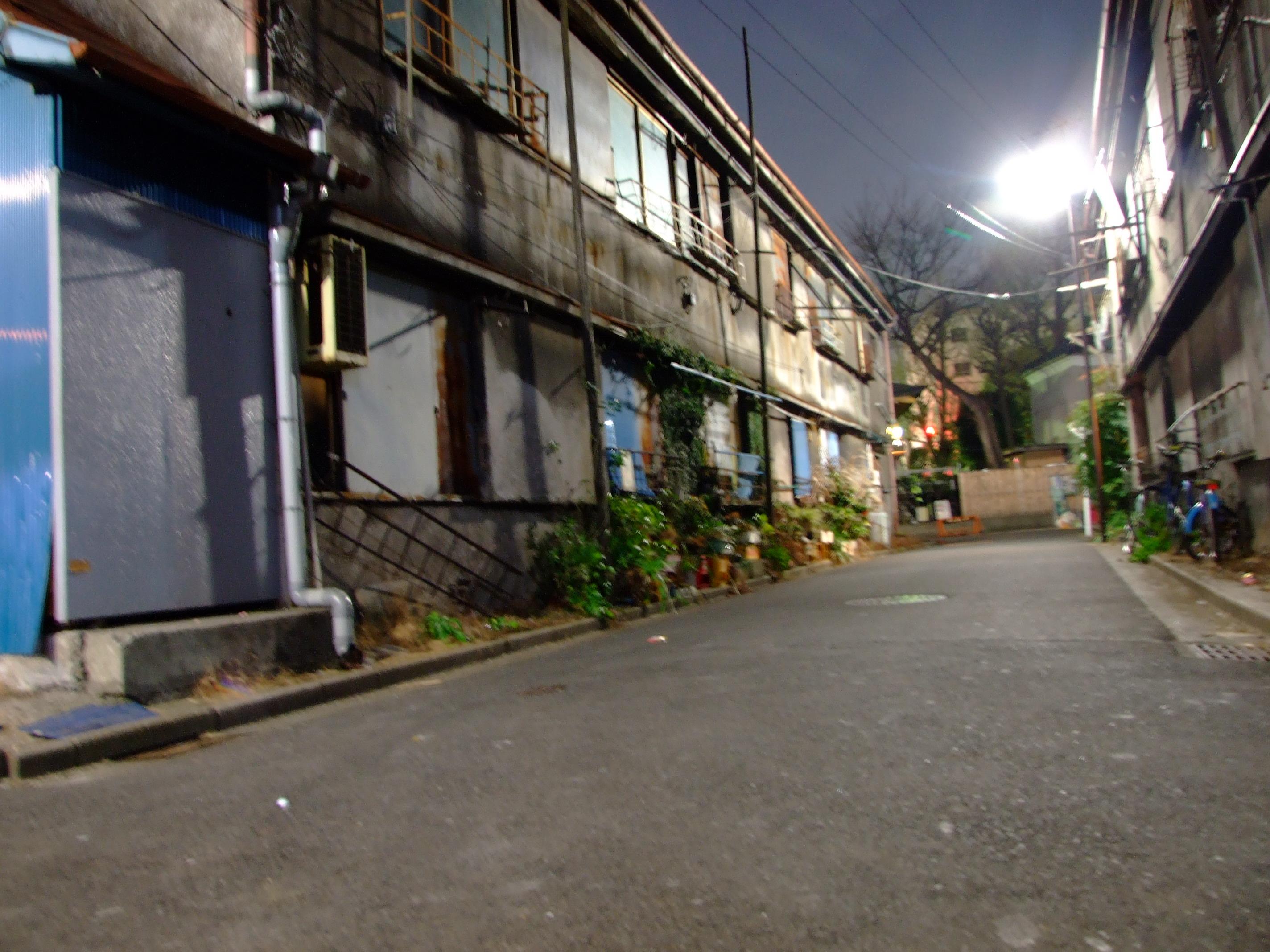 2008_02210085.jpg