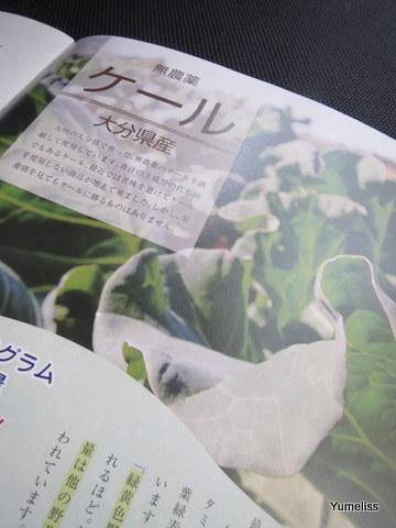 ステラ漢方「贅沢青汁」