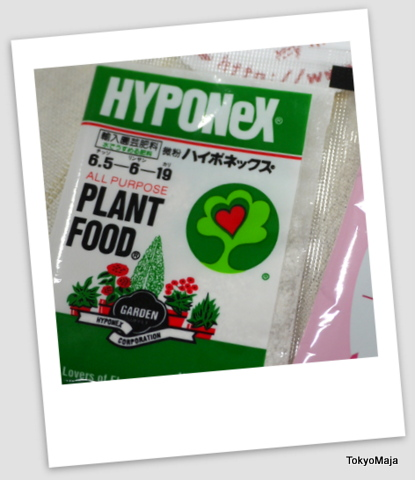 イイハナ・ドットコム鉢植え付属品
