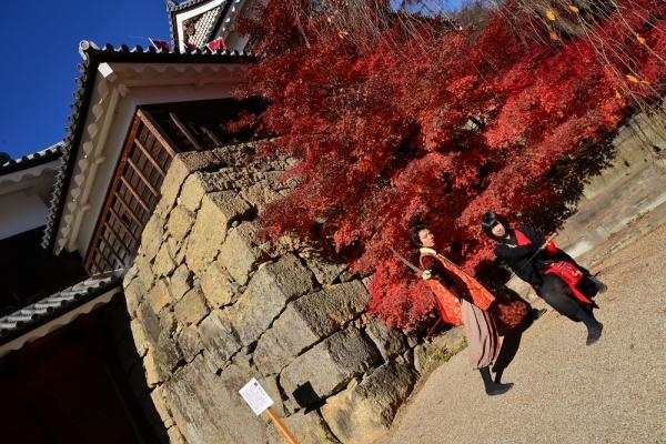 2013年11月22日 上田城跡公園