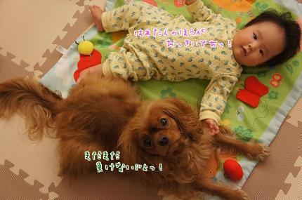 嵐丸 2013.10.31-3