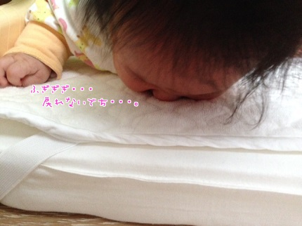 嵐丸 2013.10.31-7