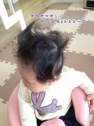 嵐丸 2013.11.18-5