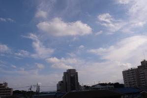 RIMG6135.jpg