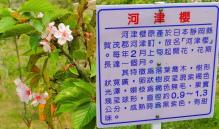 H25修学院@台湾 197s-horz