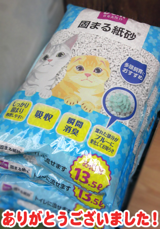 猫砂2013.3.31