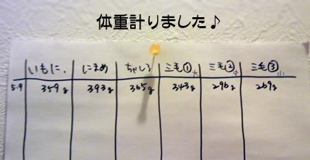 体重2013.5.9