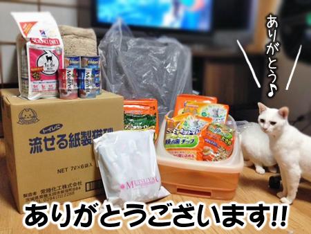 支援物資2013.11.8