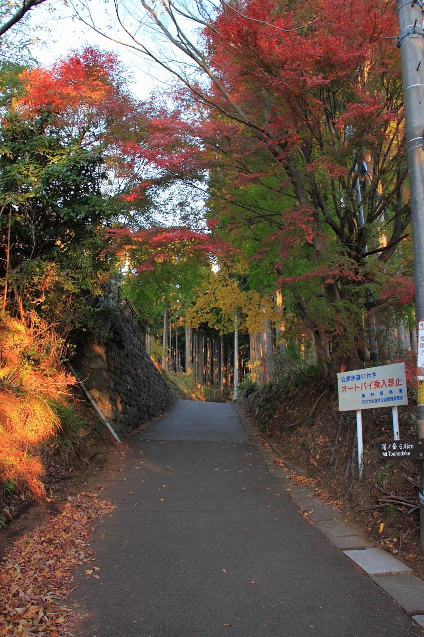 蛭ヶ岳_002