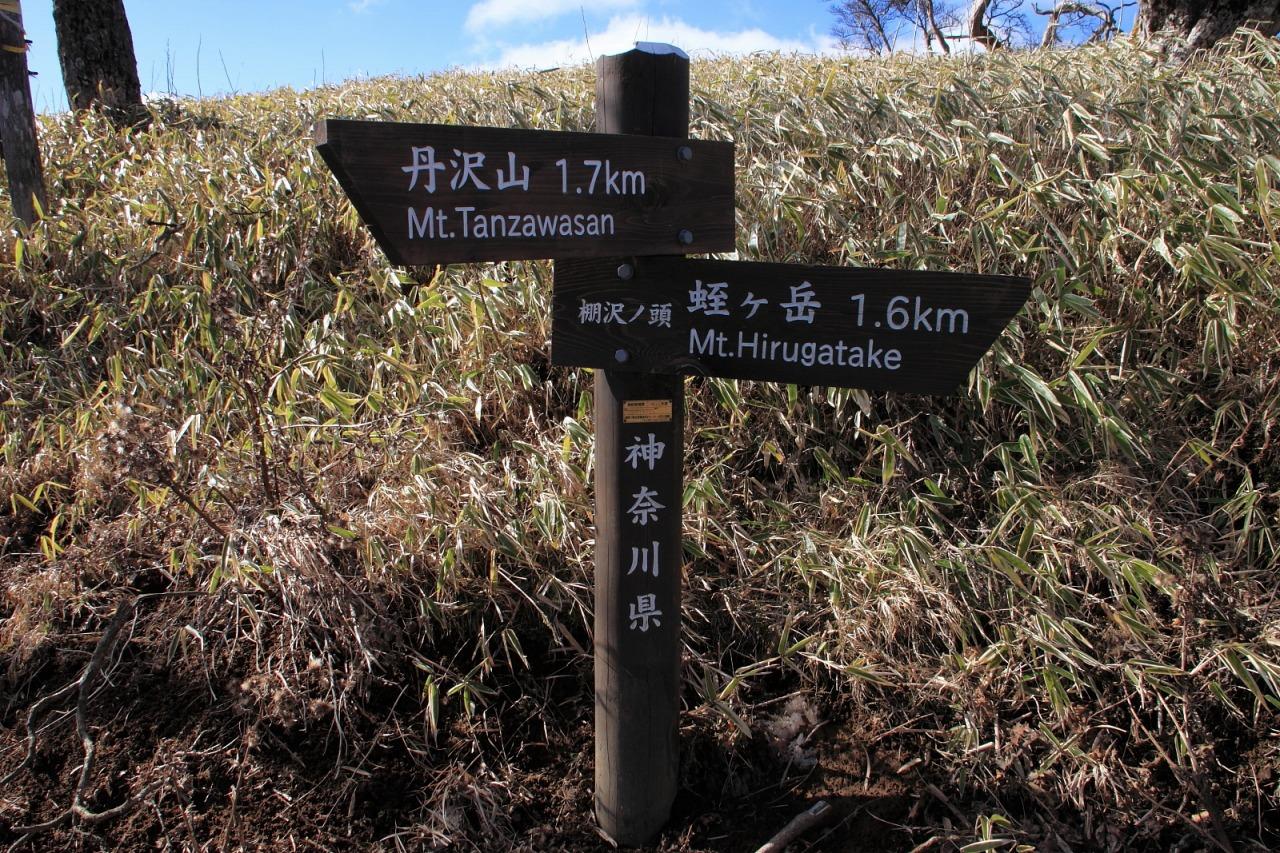 蛭ヶ岳_025