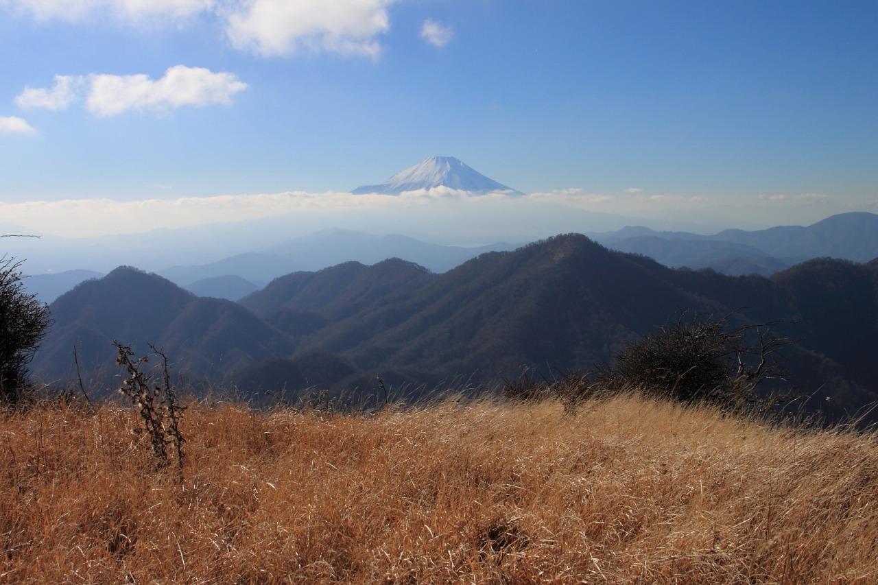 蛭ヶ岳_033