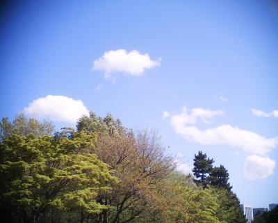 青空に雲:R2