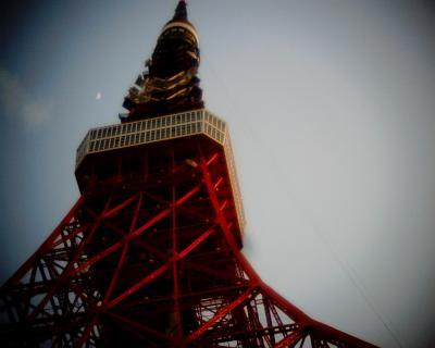 東京タワーと上弦の月の月見:Entry