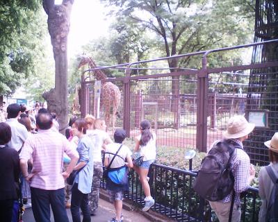 キリン・上野動物園:R2