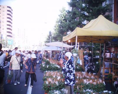 入谷朝顔市2003:R2